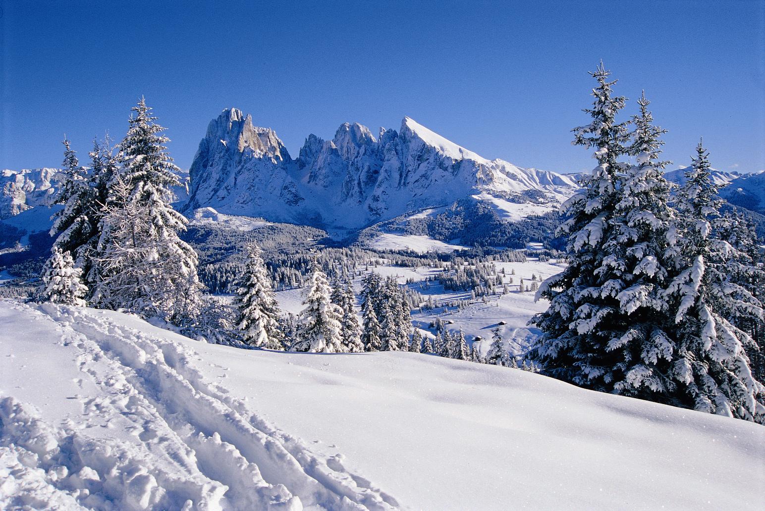 Scopri perché la neve è bianca?