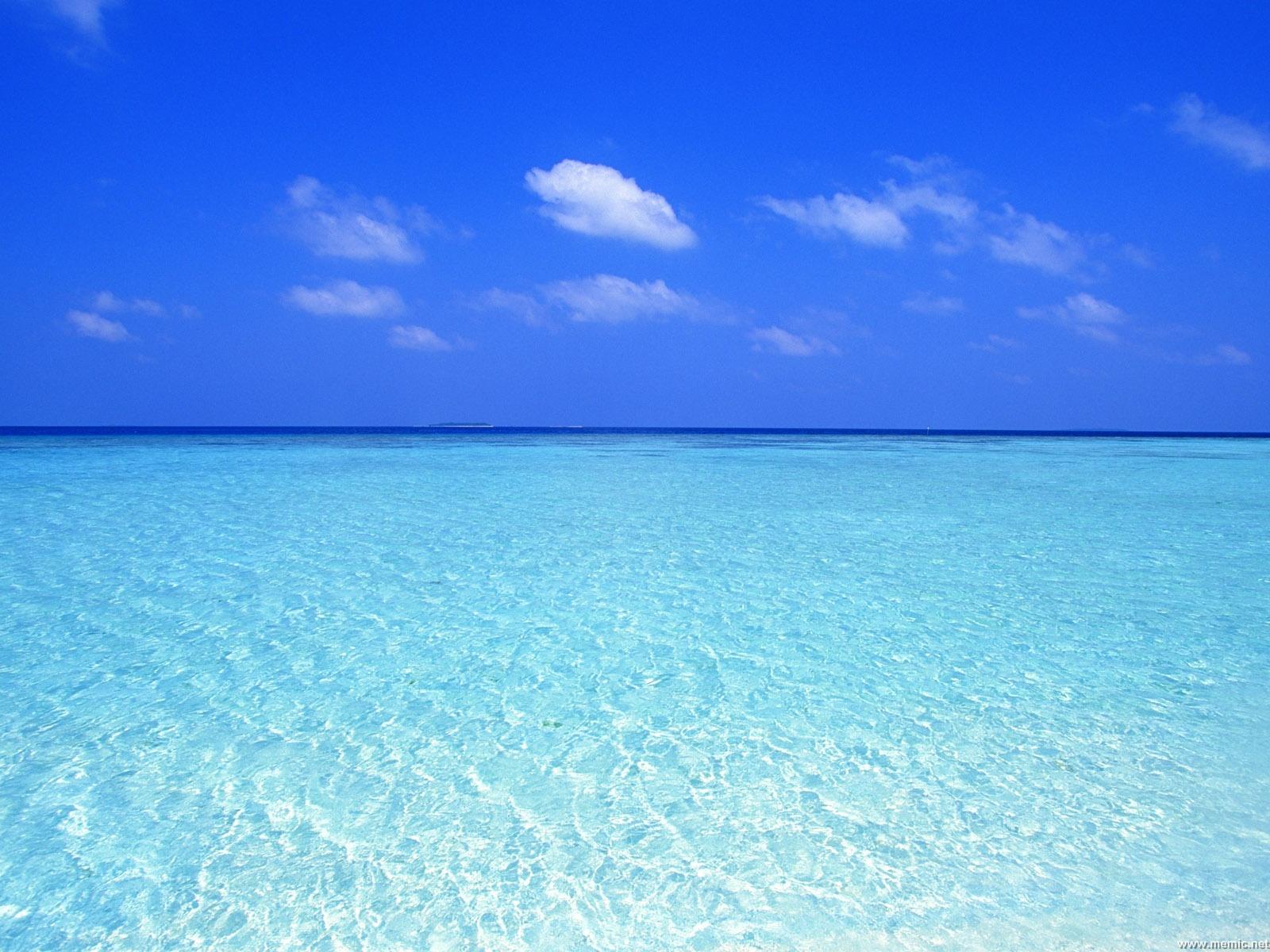 Il mare e gli oceani sono salati.