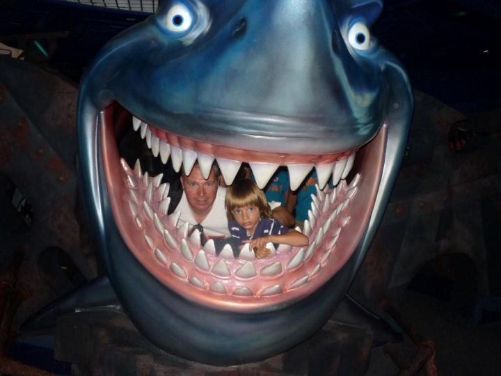 Dopo differenti avvistamenti di squali verificati nei mari italiani, si è creato troppo panico tra i bagnanti. Non tutte le specie sono pericolose. Ecco 7 motivi per non avere paura.