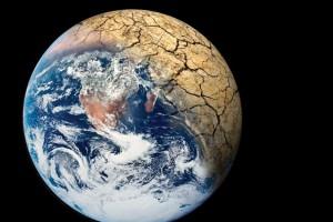Clamoroso: estinzione, la vivranno già i nostri figli?
