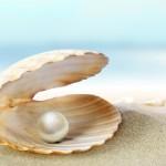 Apre un mollusco e dentro c'è una stupenda perla.