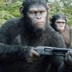 Gli animali fanno la guerra?