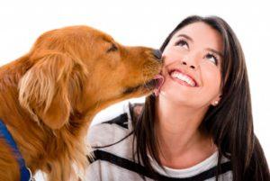 Non sarebbe vero che farsi leccare dal cane fa ammalare