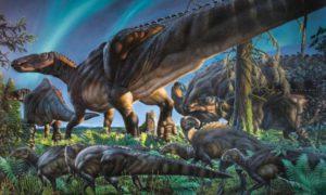 dinosauri carnivori grandi