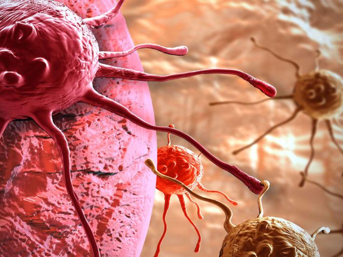 La differenza tra il tumore e il cancro.