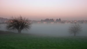 Ecco la nebbia.