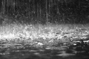 La pioggia.