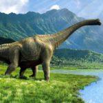 I dinosauri.